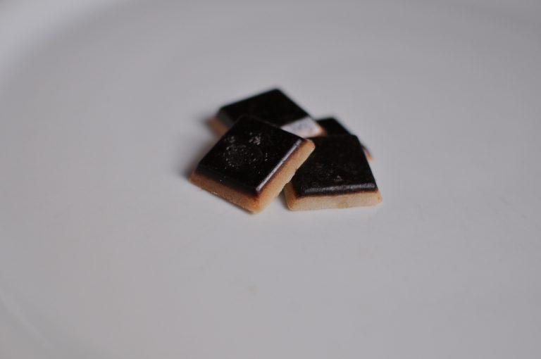 chocolat à crouer pour chien