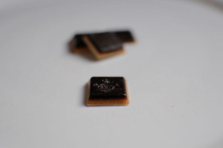 chocolat fondant chien